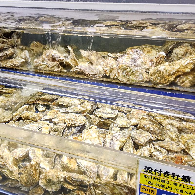 厚岸産 殻付牡蠣 マルえもん(3Lサイズ 15個セット)