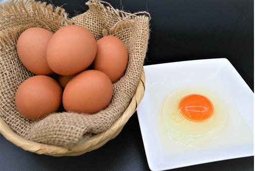 滋養卵(30個入り)