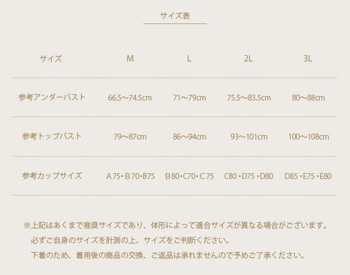 シルクモールドブラジャー M/L/2L/3L