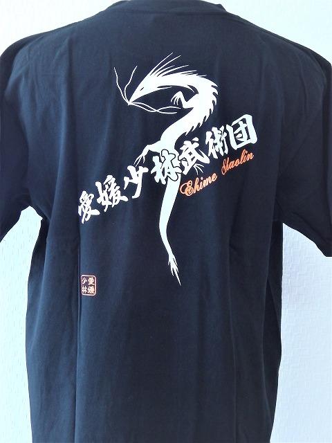 オリジナルTシャツ カンフー/少林寺/Tシャツ/練習用/龍/大人/子供