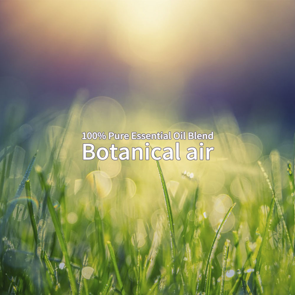 @aroma ピエゾディフューザーアロマオイル 100ml solo用 Botanical Air
