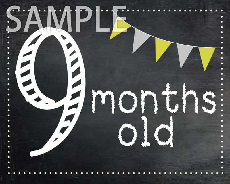 ≪データ配信≫月齢&年齢ボード1ヵ月〜12ヵ月+1歳〜12歳