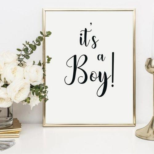≪データ配信≫マタニティーフォト  ニューボーンフォト It's A BOY & GIRL セット シンプル(縦・男女のデータ)