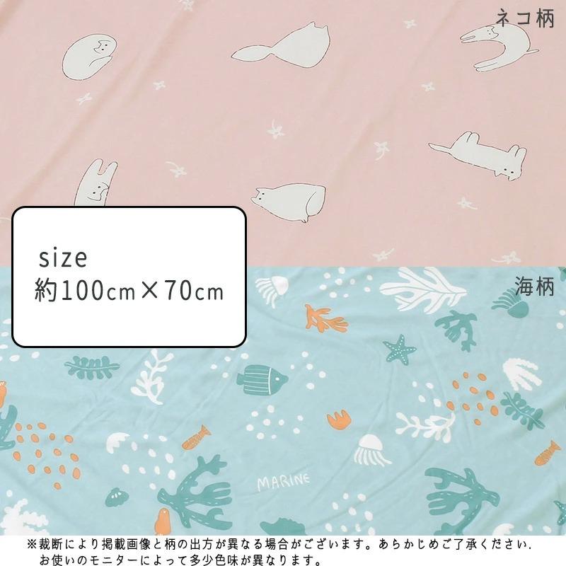 ブランケット ひざ掛け 夏用 冷感 ひんやり 猫 ねこ 涼しい クール 100×70 可愛い 接触冷感 涼感//メール便で送料無料