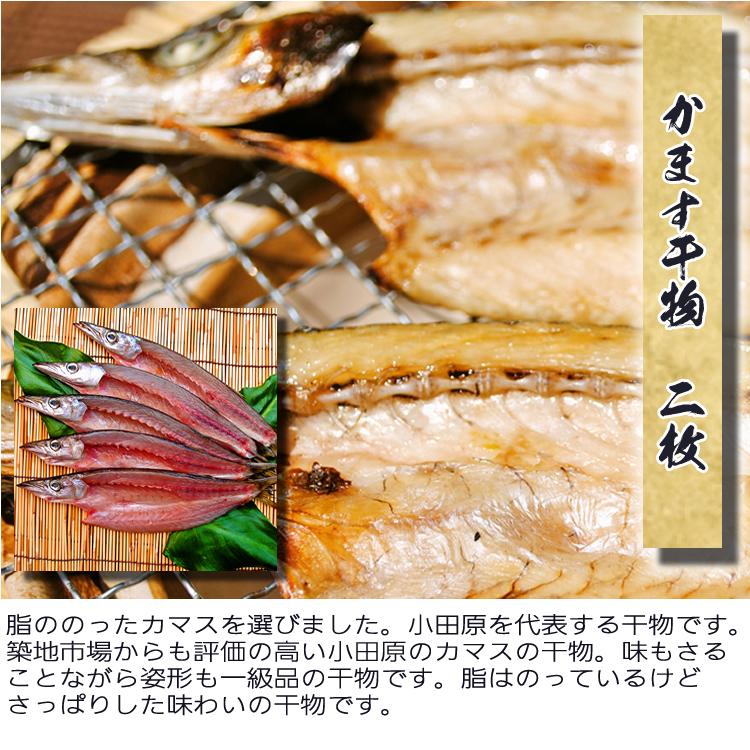 送料無料(^^♪【国産】しっかり朝飯干物セット〜干物の定番5種8枚のセットです!