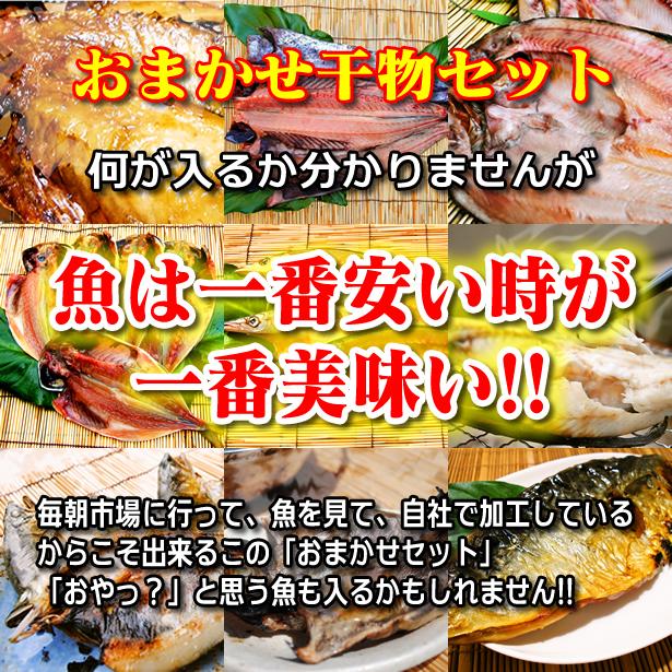 【送料無料】おまかせ干物セット4000円コース〜魚は山市干物専門店におまかせください!その時の最高の魚を干物にてお送りします。