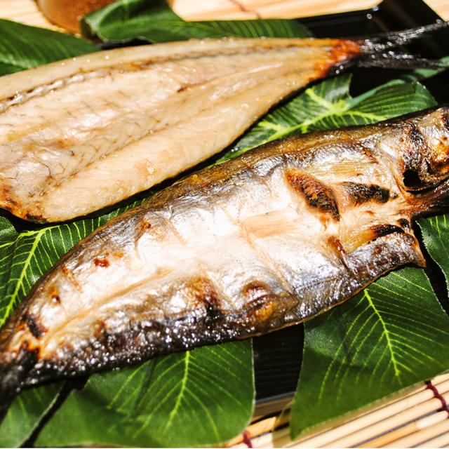 【相模湾産】水かます干物 1枚--秋に小田原を代表する魚です♪