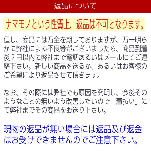 ☆送料無料☆むろあじ干物【国産】 5枚