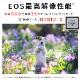 【予約商品】Canon EOS R5 ボディー【入荷予定未定】