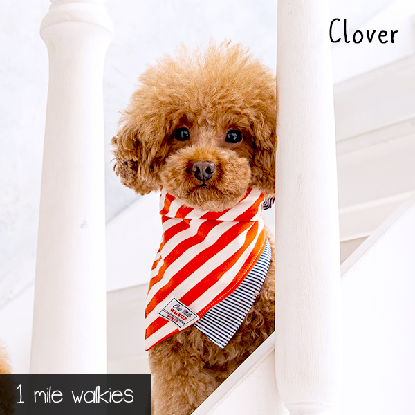 Clover(クローバー)Cool Neckband