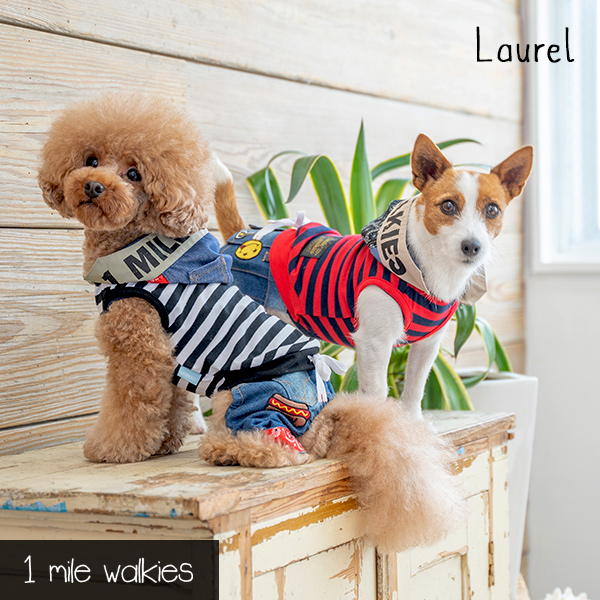 Laurel(ローレル)Stripe Hooded Vest