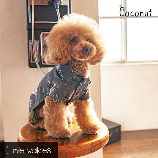 Coconut(ココナッツ)ALoha Shirt