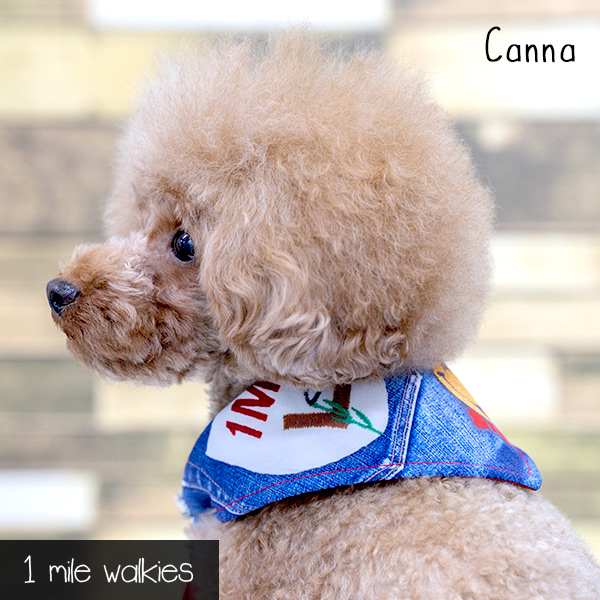 Canna(カンナ)Cool Bandana