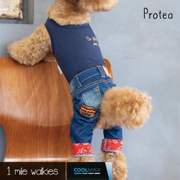 Protea(プロテア)Denim All in One