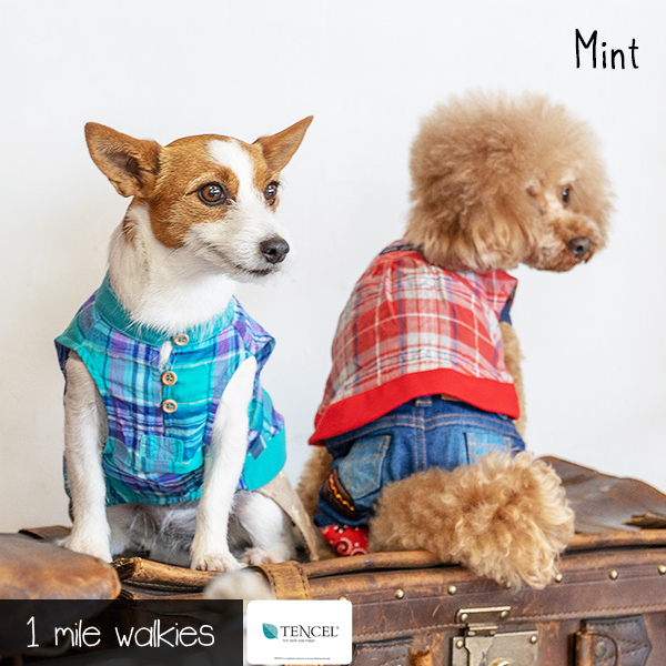 Mint(ミント)Check Pullover