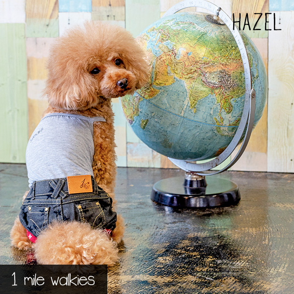 HAZEL(ヘーゼル)Star Embroidered  All in One