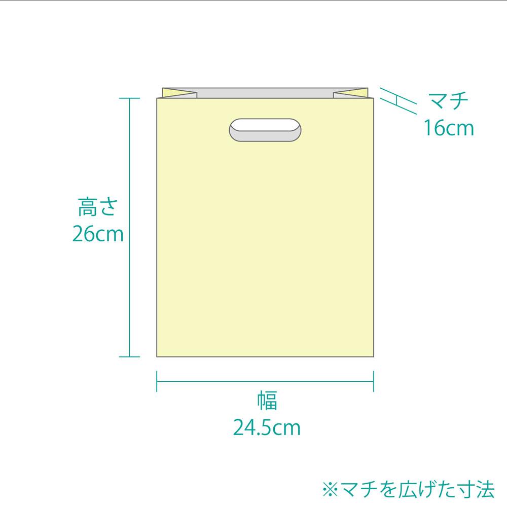 【手提げ袋02】 LDポリ袋 [中] カラー