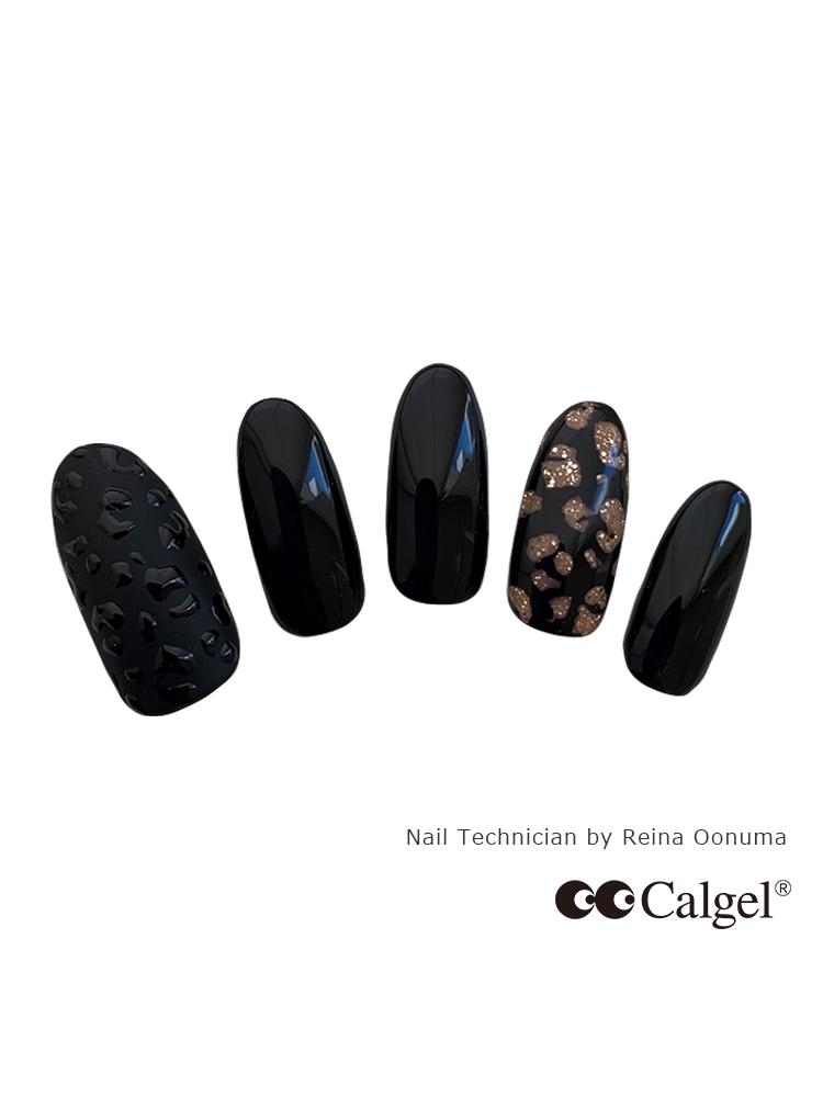 カラーカルジェルプラス ソリッドブラック2.5g CGM01BK