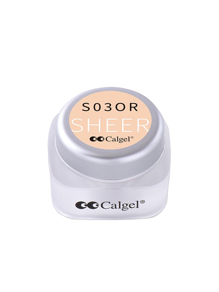 カラーカルジェル プラス  オレンジフロート2.5g CGS03OR