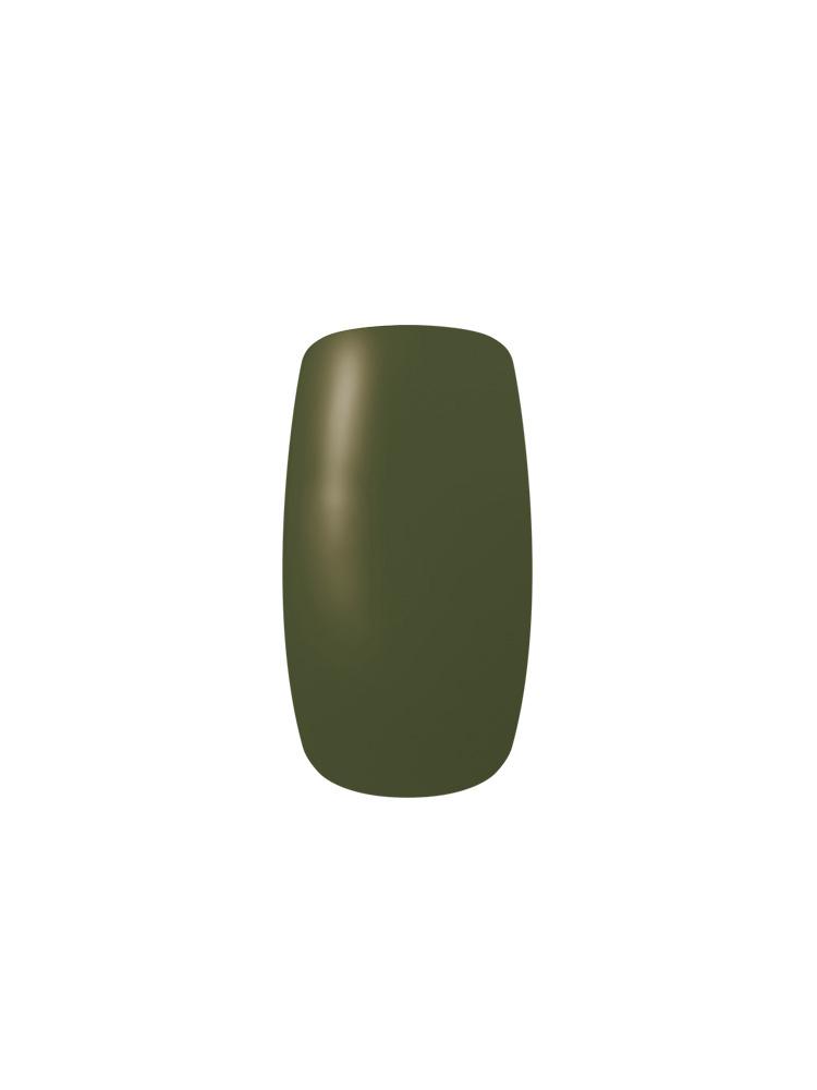 カラーカルジェル ダークリーフ4g CGGR05S