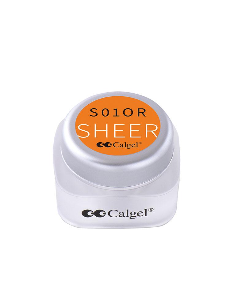 カラーカルジェルプラス シアーオレンジ2.5g CGS01OR