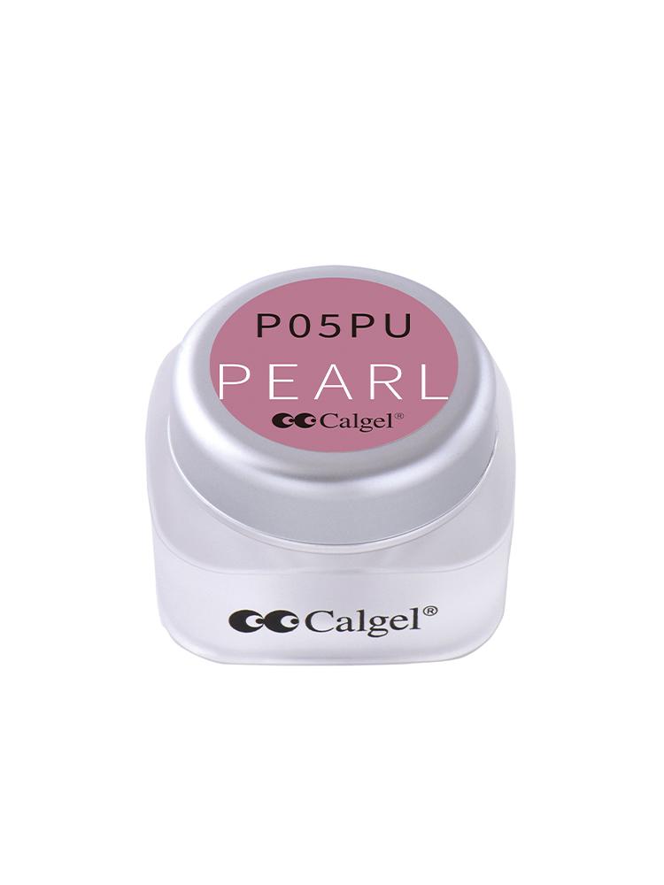 カラーカルジェルプラス シャインラズベリー2.5g CGP05PU