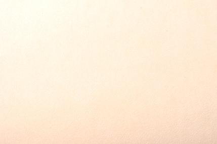 フレッシュシルキーC/#D11 しんじゅ 117CM幅×1メートル