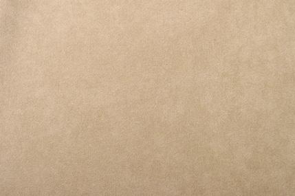 フレッシュシルキーC/#RDO とりのこ 117CM幅×1メートル