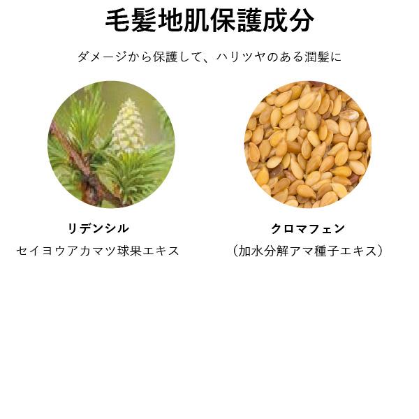 【定期購入】プフレスカルプシャンプー