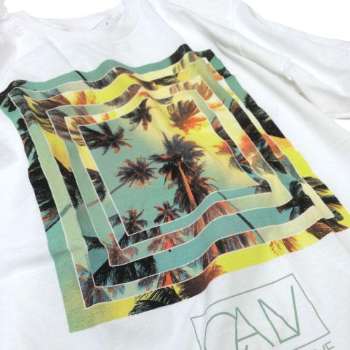 【CALV】【Tシャツ】CALVパームツリーグラフィックTシャツ[calv_01]