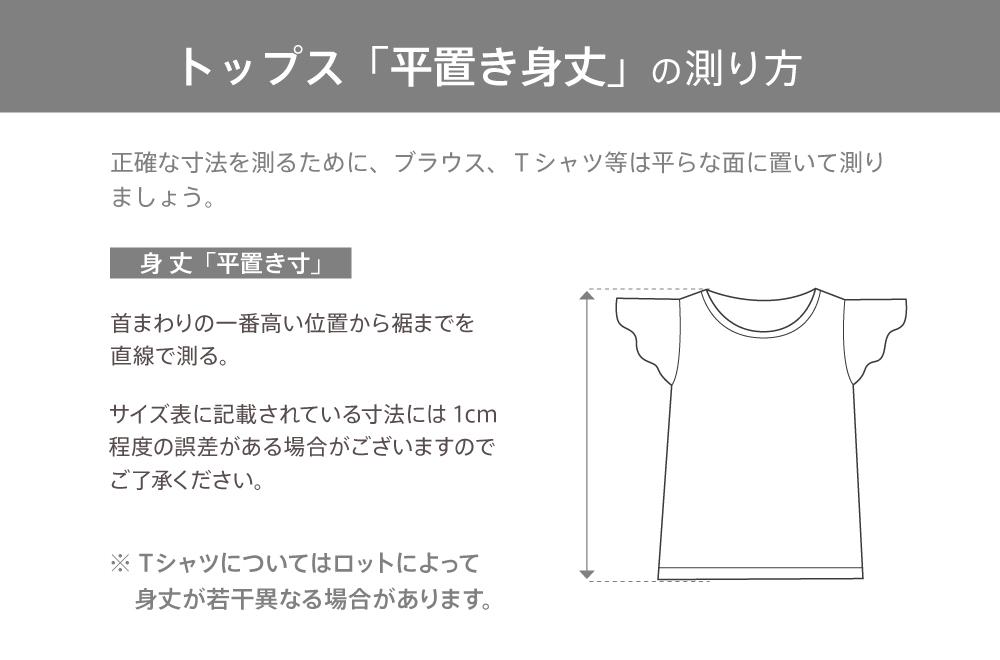Tシャツ アンスリウム&ジンジャー ホワイト 2683w