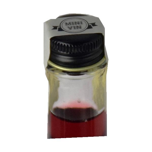 【送料無料】 <br>MINI VIN 日本ワイン飲み比べ 6本セット<br>専用ボックス入り