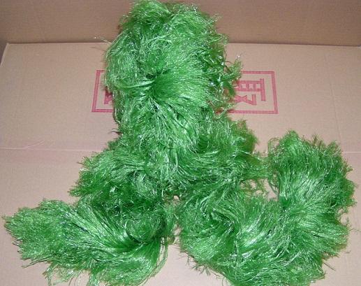 モールコード(産卵藻)沈下性 長さ1.5m 葉長20cm