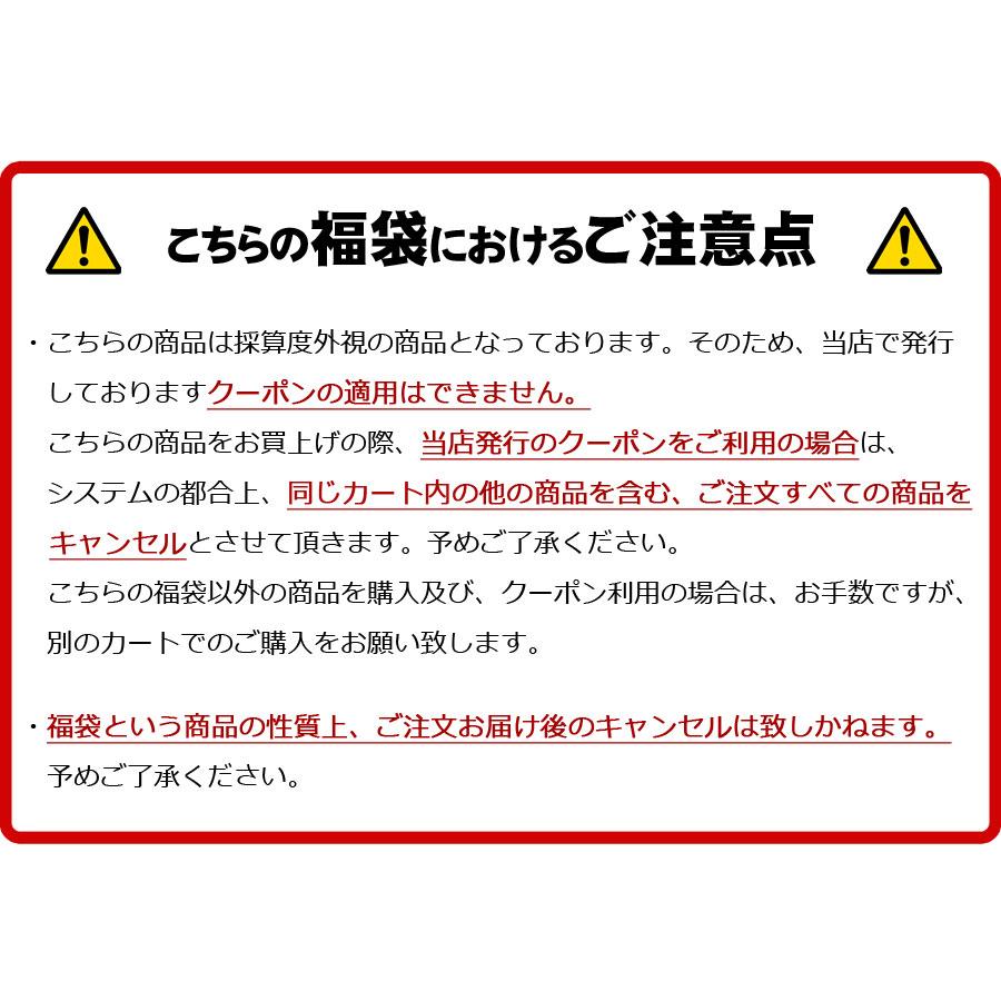 [クーポン利用不可]ヘアアクセサリー6点入り 福袋 【送料pt100】