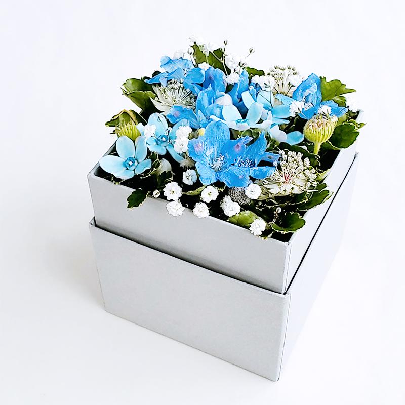エルベBOX ブルー(Sサイズ)