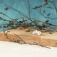キュービックジルコニアセラミックポストピアス ゴールド CP-003