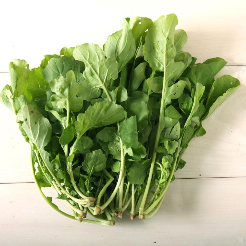 【産地直送便】さんさん農園の旬の野菜セット