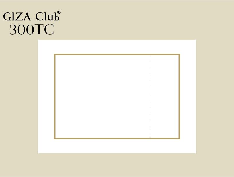 エジプト超長綿 GIZA Club 300TC ピロケース/額縁+刺繍