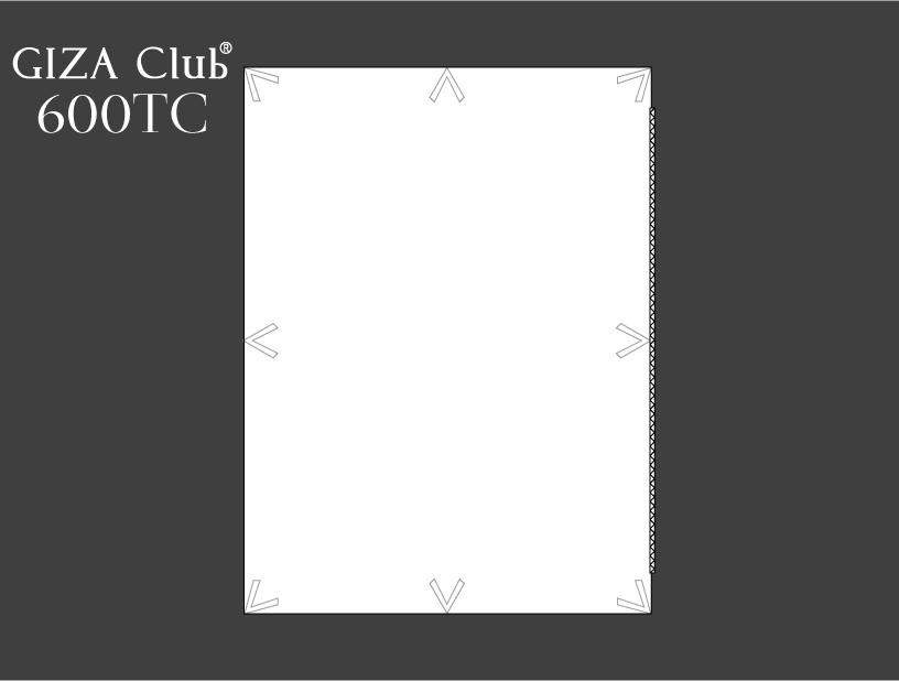 エジプト超長綿 GIZA Club 600TC デュべカバー