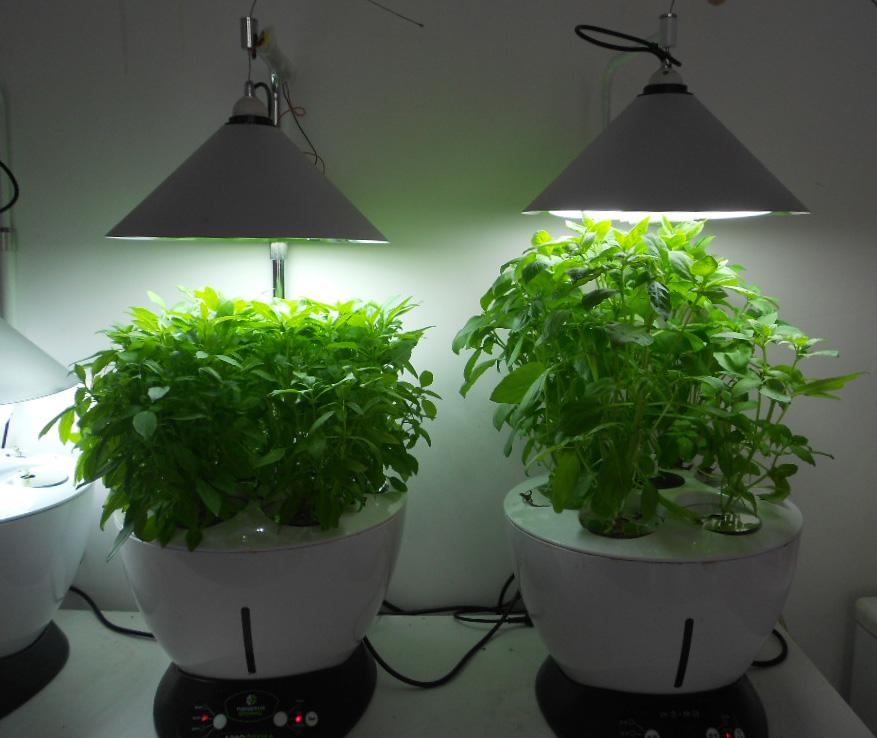 水耕栽培キット Living Garden