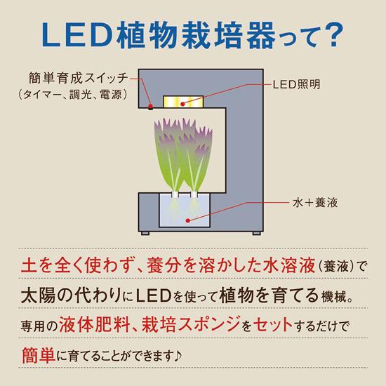 LED水耕栽培器 灯菜14 Akarina14