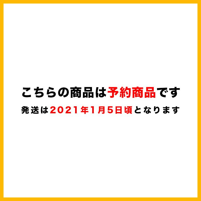 GC0268)ナイキ NP LV タンク