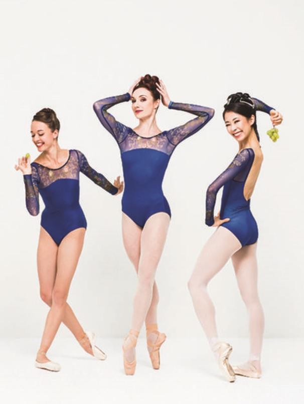 〜シアラヴォラコレクション〜Ballet Rosa  ロングスリーブレオタード SAE サエ