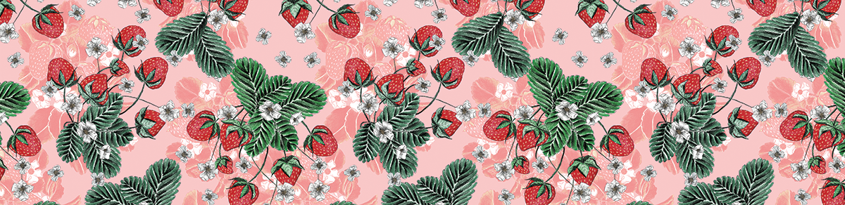 【数量限定】Ainsliewear キャミソールレオタード Summer Strawberry 136SSP