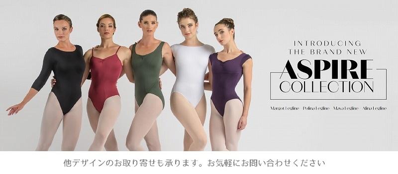 【特注/メーカーお取り寄せ】Ballet Rosa ロングスリーブレオタード AZORA