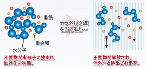 テラヘルツ乳液(天然豆乳)テラヘルツ波照射した肌年齢化粧品