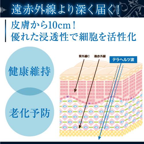 テラヘルツ鉱石 効果絶大デラックス(パワー4倍)46g テラヘルツ水もつくれる
