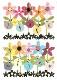【サンキューカード フラワー】オランダ製Quire(クワイヤー)グリーディングカード/COLOURROUND