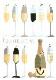 【お祝いカード シャンパン】オランダ製Quire(クワイヤー)グリーディングカード/COLOURROUND