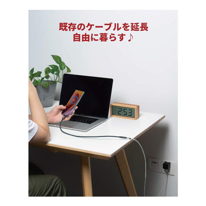 Type-C(オス) - Type-C(メス)延長ケーブル【1m】【iVanky】【VBD42】【SG】